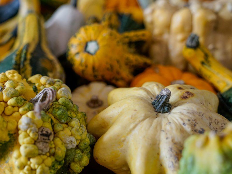 Un menu che profuma d'autunno